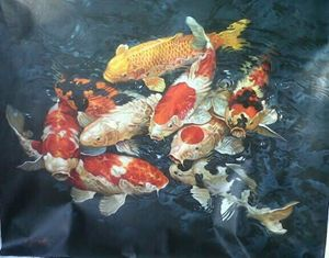 Heartful of Koi by Sumantri