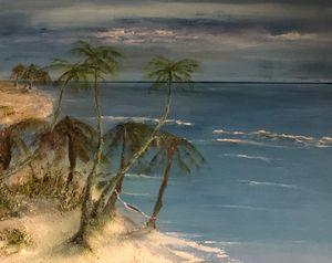 Stormy Palms