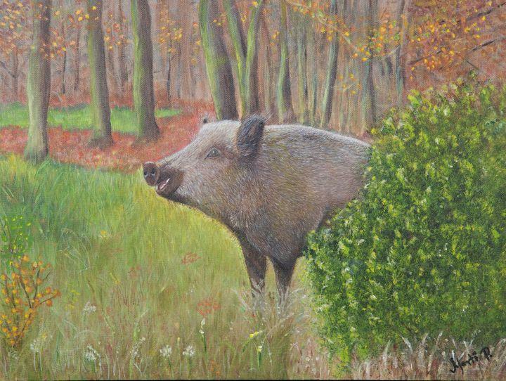 Wild boar - MartArt
