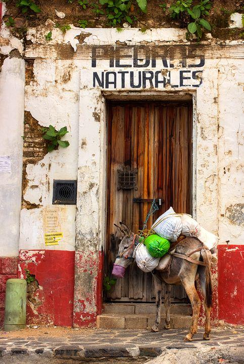 True Nature - Octavio Maya's Mexican Fantasy