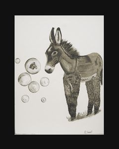 Fun with Bubbles - Burro