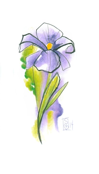Iris - Sierra Kay Art
