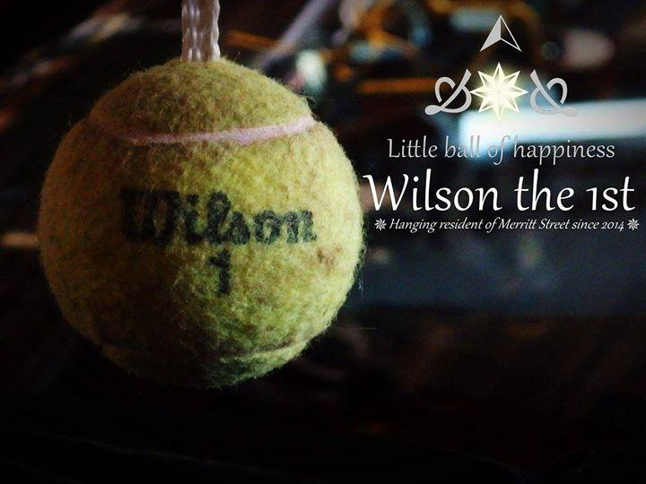 Wilson - Constance Nik