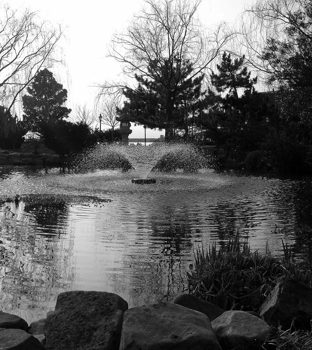 Reflections in Grey - Ren's Lens