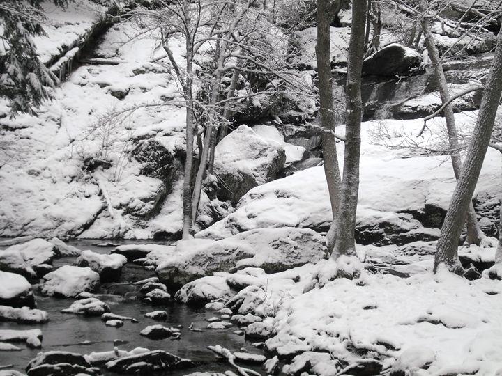 Cunningham Falls in Winter 2 - Ren's Lens
