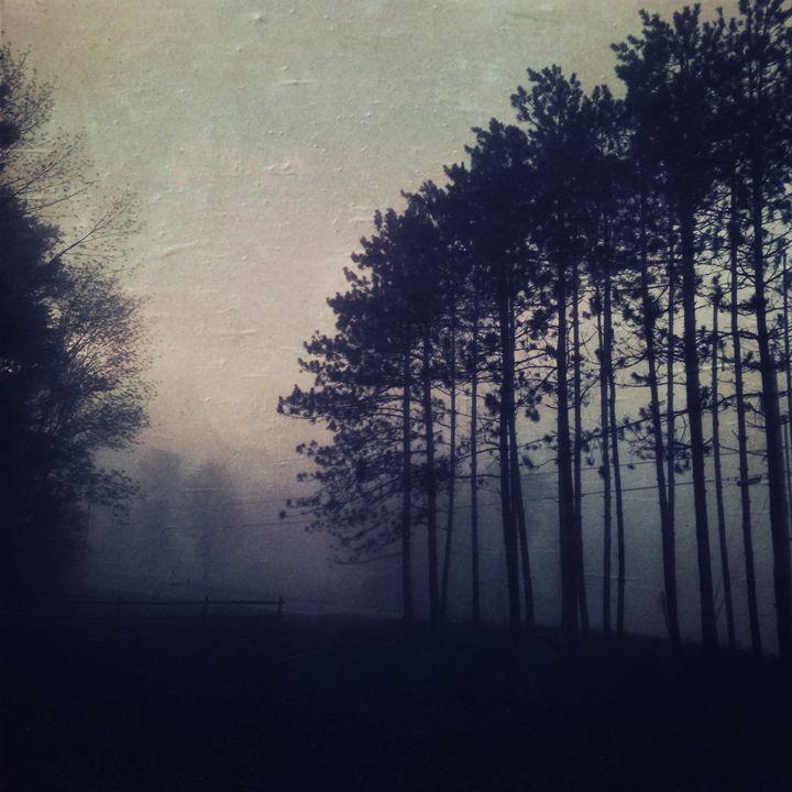 Before Dawn - Peter Carini