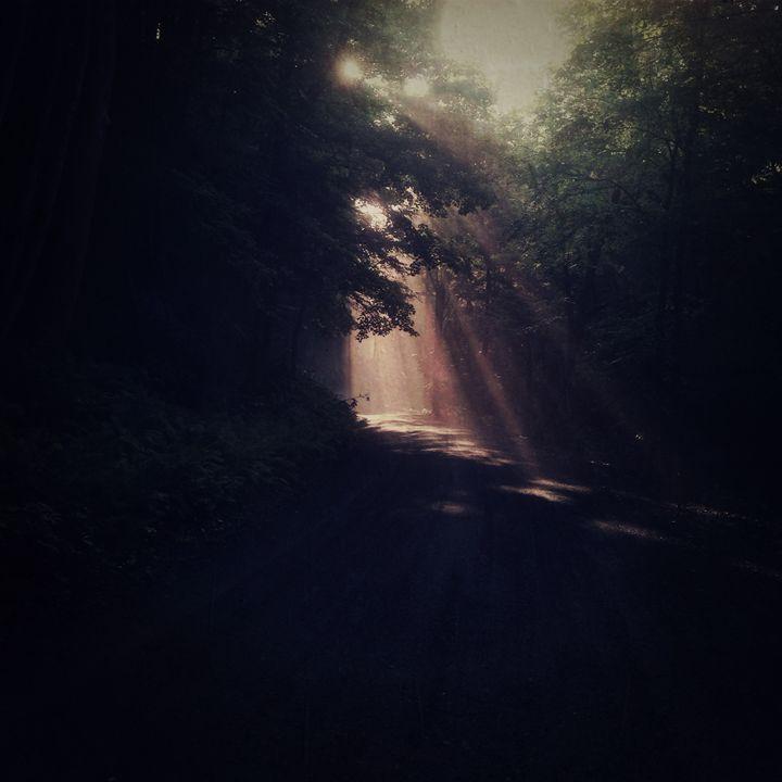 Sun shaft - Peter Carini