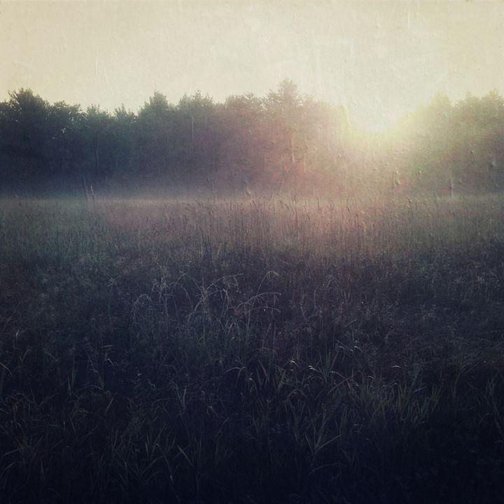 Early Light - Peter Carini