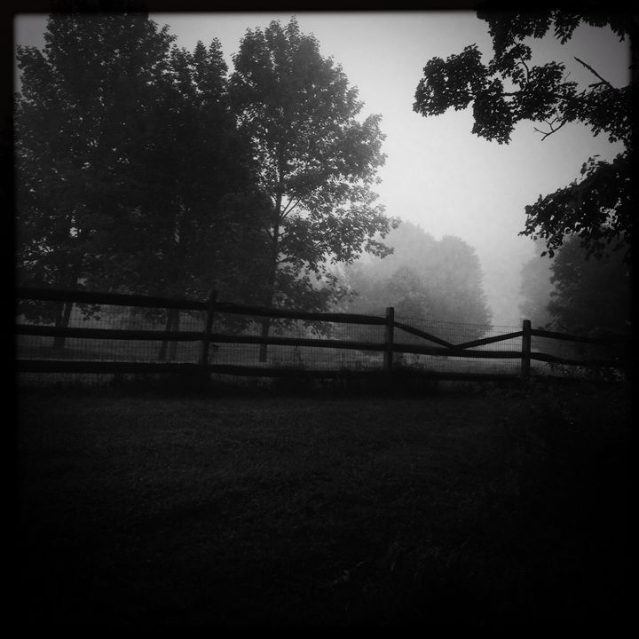 Morning Fog - Peter Carini