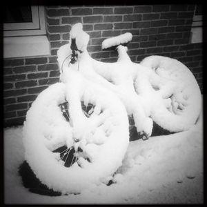 Snow Bike - Peter Carini