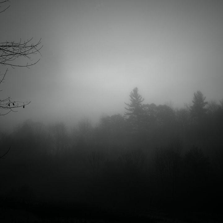 Foggy Mountain - Peter Carini