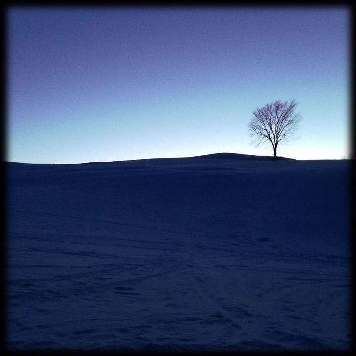 Late Light - Peter Carini