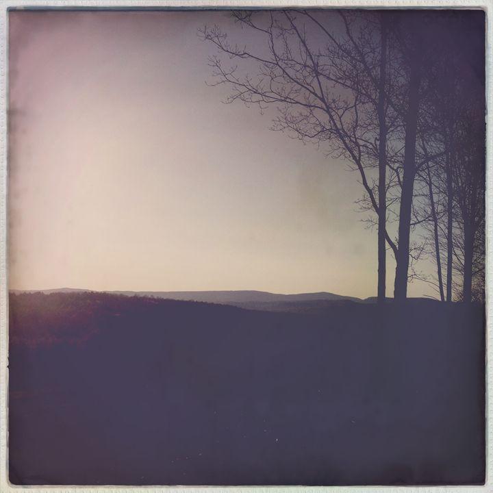 Morning - Peter Carini
