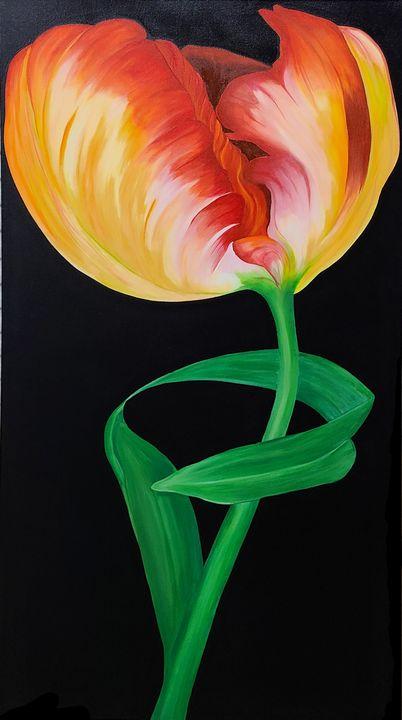 Solo tulip - C.A. Reddick