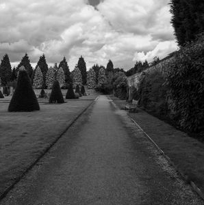 Newstead Abbey Country Garden Gravel - S. Lyons Photography