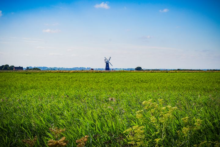 Green Grass Field with Windmill - S. Lyons Photography