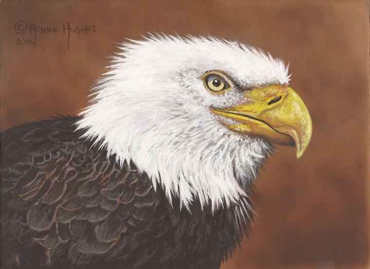Alaska Eagle Study - Hughes Twins Art
