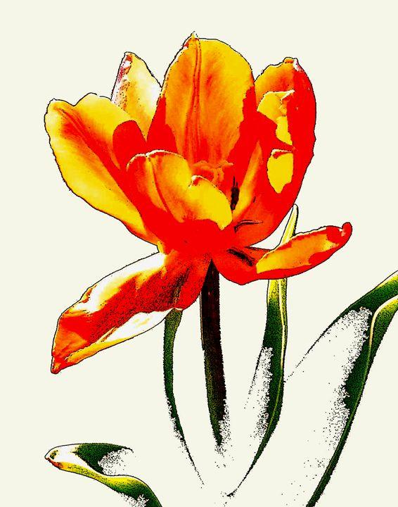 Poppy 3 - JonesArtWorkS