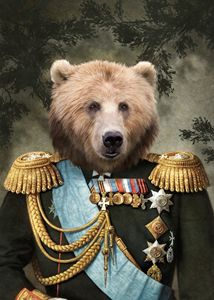 Commander Bear