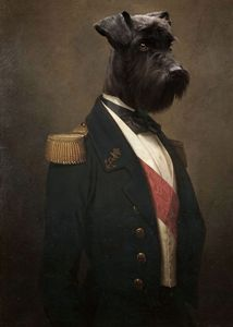 Sir Schnauzer the Magnificent
