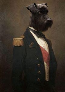 Sir Schnauzer the Magnificent - Matt Van Gorkom