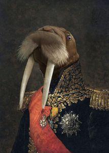 Sir Walrus III