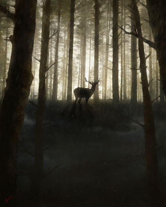 Rainy Forest Deer - Matt Van Gorkom
