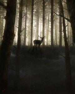 Rainy Forest Deer