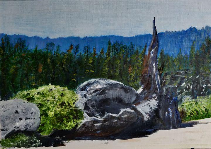 Yosemite National Park - Dianne Pike Art
