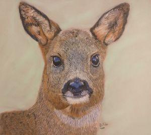 A Regal Deer
