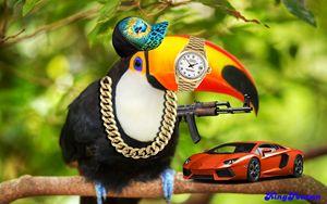 Rich Homie Toucan