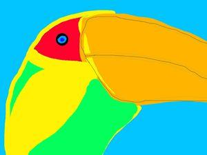 Bleu Eyed Toucan - King Toucan