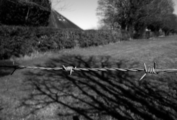 Barbed Wire - S Koning