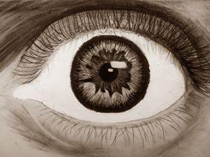 Eye - Sepia