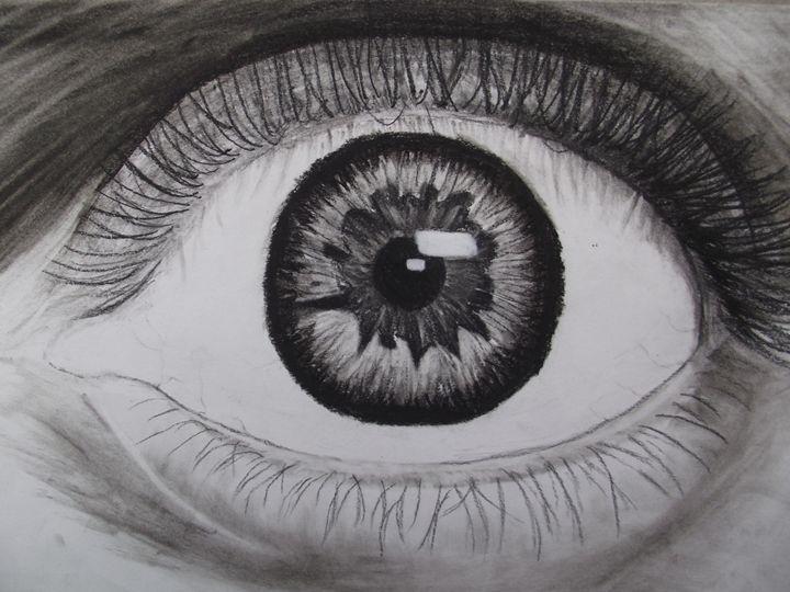 Eye - Spannings Gallery
