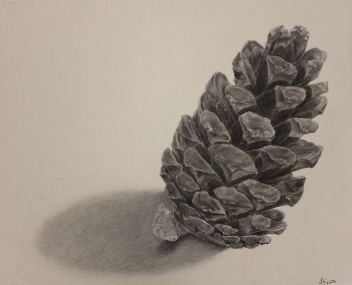 Pine Cone - Sophia Rizzuto