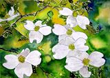 Dogwood flower signed art print