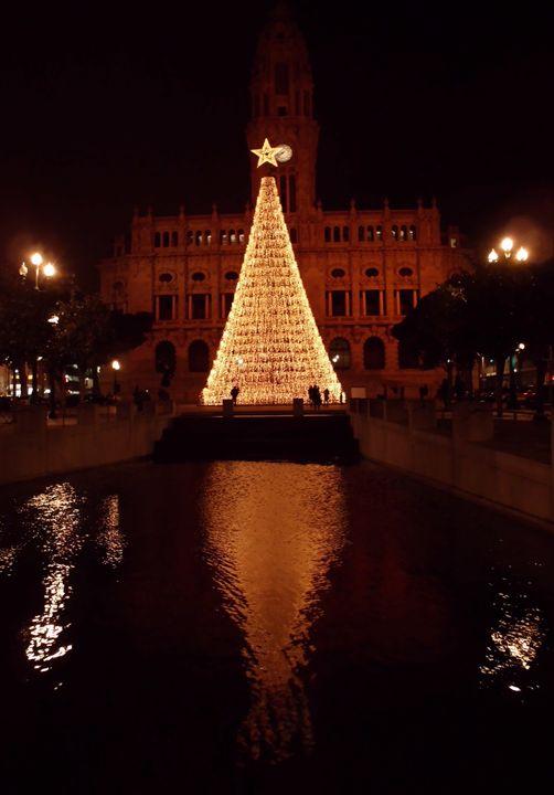 Christmas tree at Mayors house - OPO - Maria João