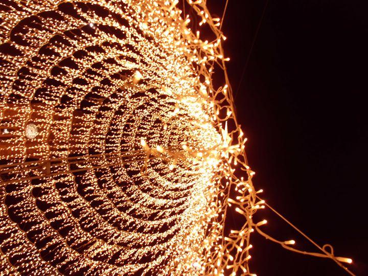 Christmas lights - Maria João