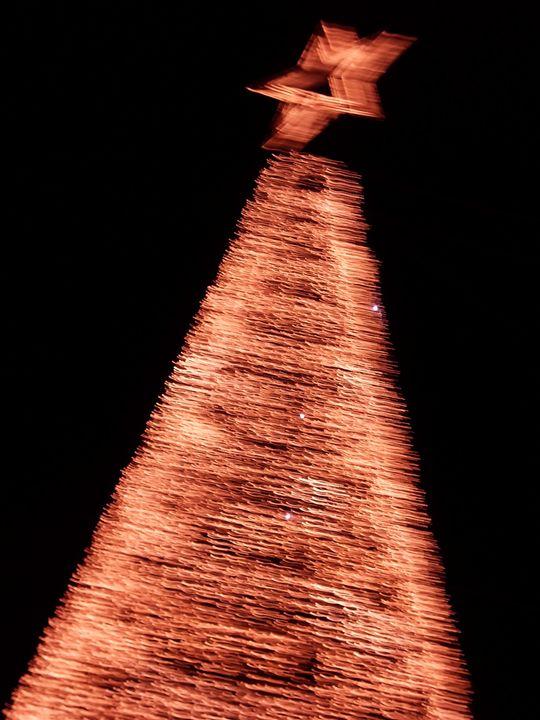 Christmas tree - Maria João