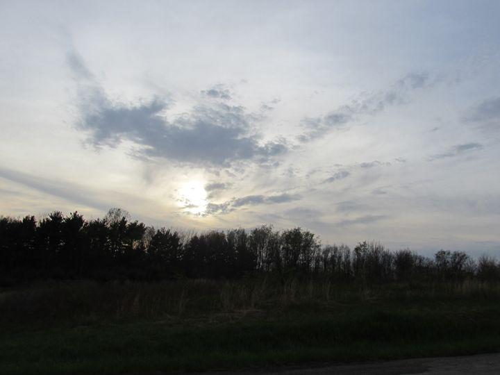 Vanishing Sky - Gary Braniff