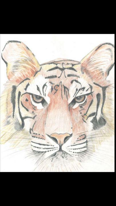 Tiger - ArtDabbler