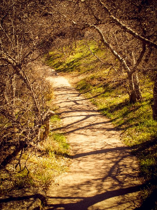 Path - TerraScapes Fine Art and Photography