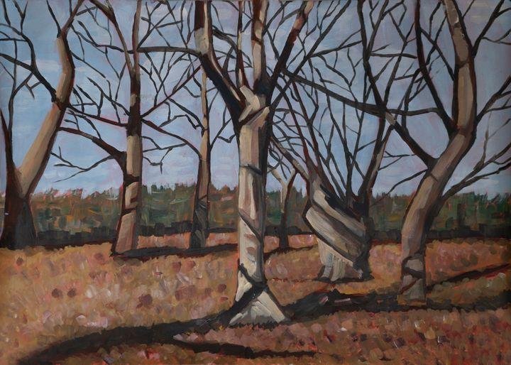 Trees - Ani Cirlig