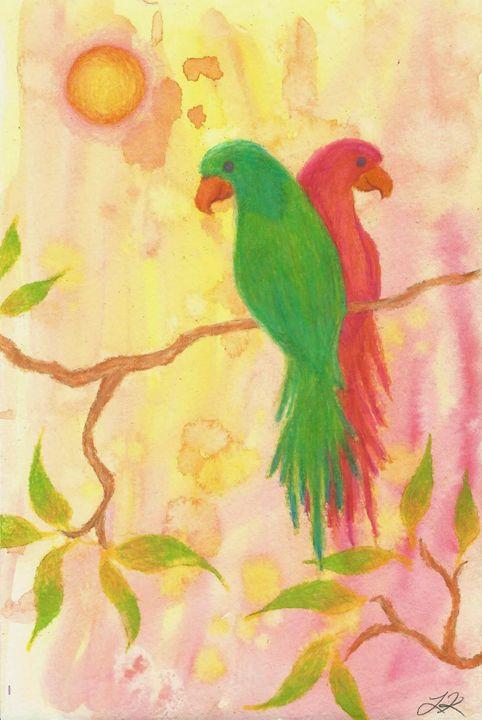Parrots - Lindsey Raena Art