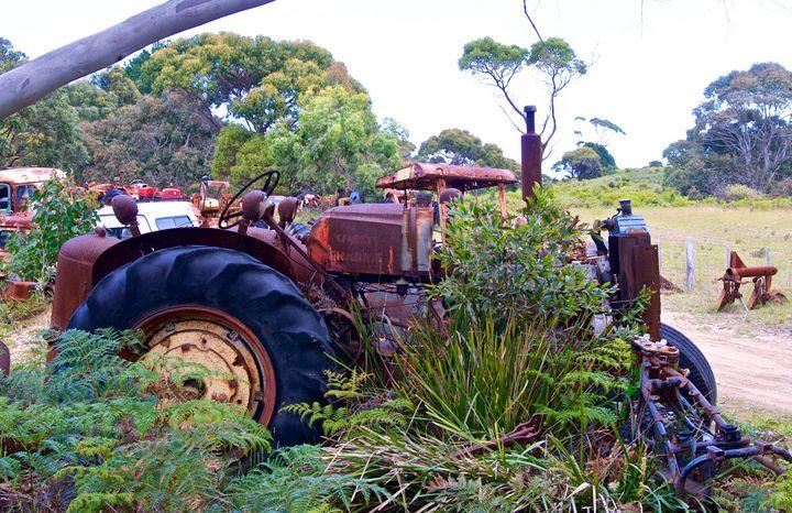 Overgrown Tractor - tasmanianartist D1g1tal-M00dz