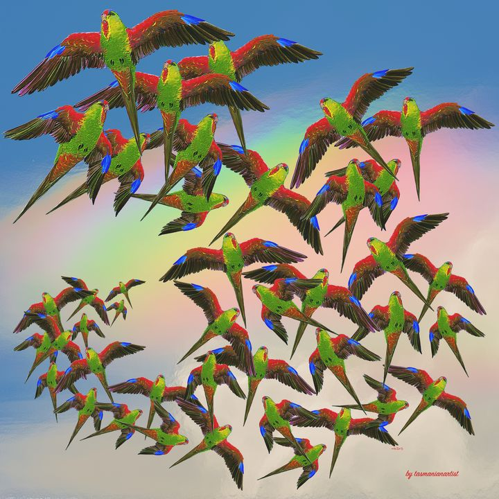 Arrangement with Swift Parrots - tasmanianartist D1g1tal-M00dz