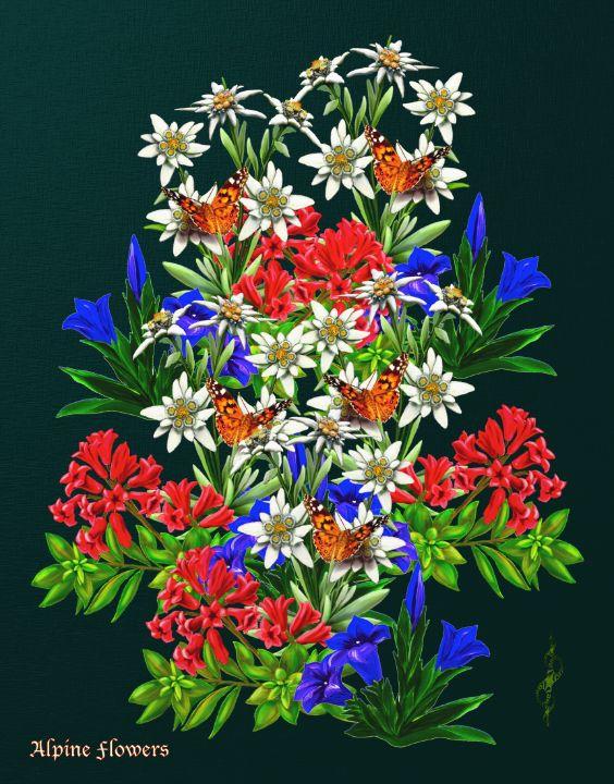 Alpine Flowers - tasmanianartist D1g1tal-M00dz