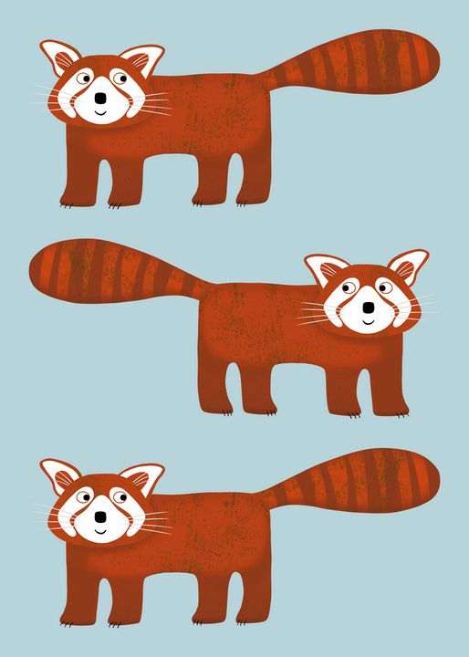 Red Panda - Nic Squirrell