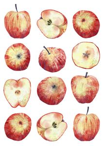 Apples - Nic Squirrell
